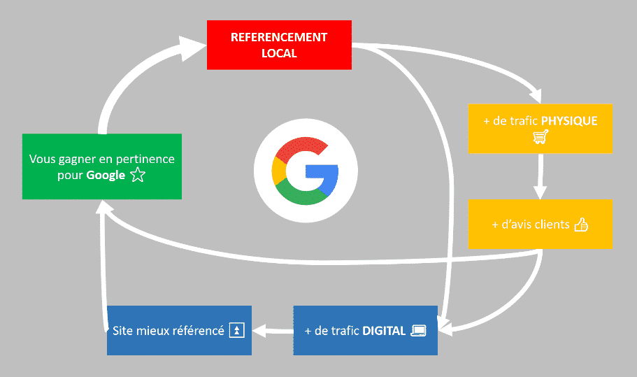 seeweb référencement local seo infographie